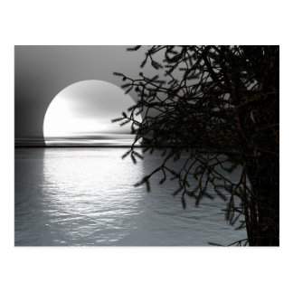 Moonlight Over the Water Postcards