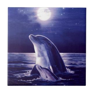 Moonlight Swim Ceramic Tiles