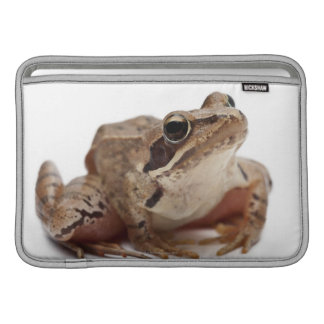 Moor Frog - Rana arvalis MacBook Sleeve