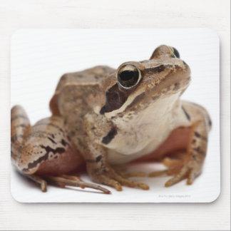 Moor Frog - Rana arvalis Mouse Mat