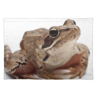 Moor Frog - Rana arvalis Place Mat