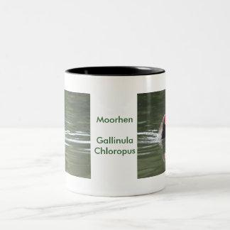Moorhen and Reflection Two-Tone Coffee Mug