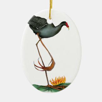Moorhen bird, tony fernandes ceramic oval decoration