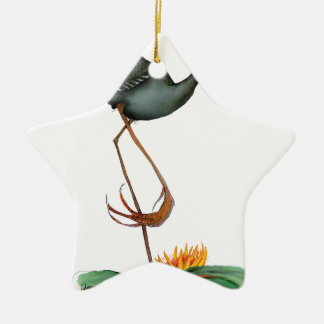 Moorhen bird, tony fernandes christmas ornament