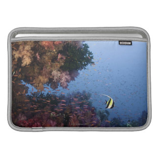 Moorish Idol MacBook Sleeves