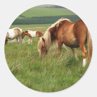 moorland Ponies Classic Round Sticker