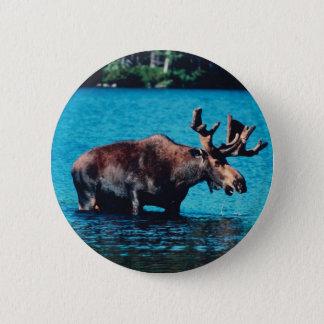 Moose 6 Cm Round Badge