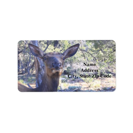Moose Address Labels
