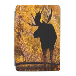 Moose (Alces Alces) Bull In Golden Willows 2 iPad Mini Cover