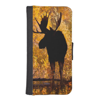 Moose (Alces Alces) Bull In Golden Willows 2 iPhone SE/5/5s Wallet Case