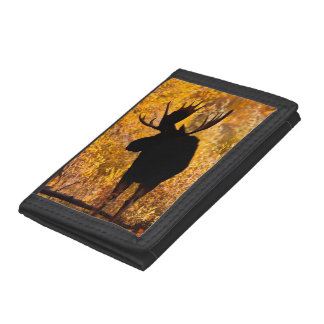 Moose (Alces Alces) Bull In Golden Willows 2 Tri-fold Wallet
