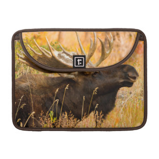 Moose (Alces Alces) Bull In Golden Willows Sleeve For MacBook Pro