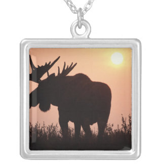 moose, Alces alces, bull with large antlers, Silver Plated Necklace