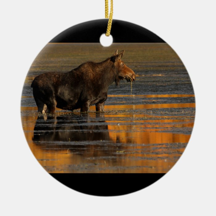 moose and reflections round ceramic decoration