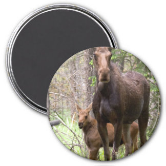 Moose Animal Forest Peace Love Destiny 7.5 Cm Round Magnet