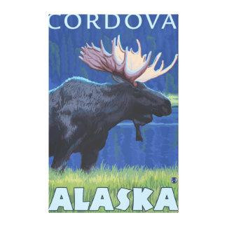 Moose at Night - Cordova, Alaska Canvas Print