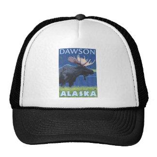 Moose at Night - Dawson, Alaska Cap