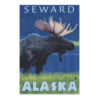 Moose at Night - Seward, Alaska Poster