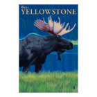 Moose at Night - West Yellowstone, Montana Poster