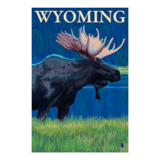 Moose at Night - Wyoming Poster