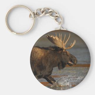 moose basic round button key ring