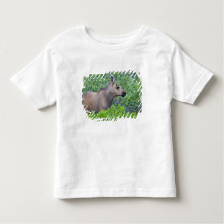 Moose calf in the Many Glacier Valley of Toddler T-Shirt
