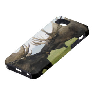 Moose Case For The iPhone 5