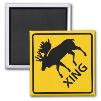 Moose Crossing Highway Sign Square Magnet