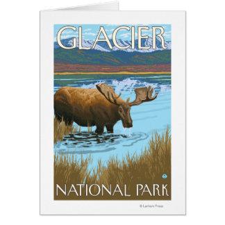 Moose Drinking at Lake - Glacier National Park, Card