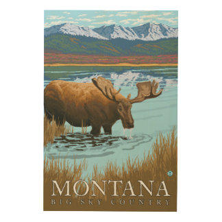 Moose Drinking at Lake - Montana Wood Print