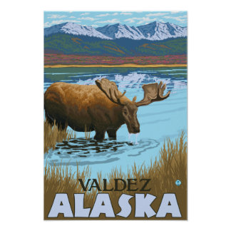 Moose Drinking at Lake - Valdez, Alaska Poster