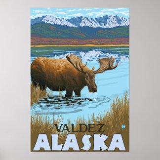 Moose Drinking at Lake - Valdez, Alaska Poster