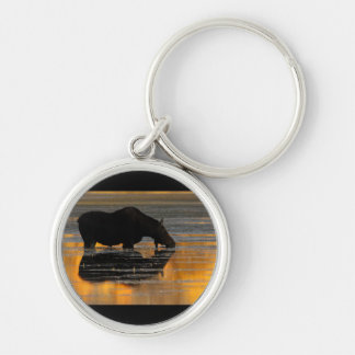 Moose & Fall Reflections Keychain