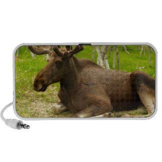 Moose iPhone Speaker