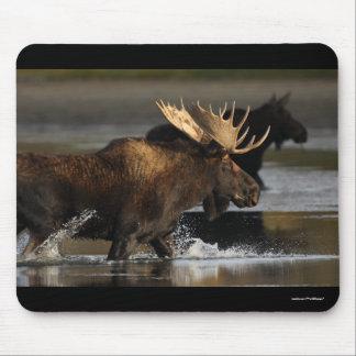 Moose Mouse Mat
