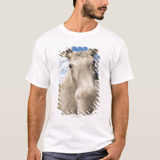 Moose on a field, Sweden. T-Shirt