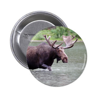 Moose on a Mission 6 Cm Round Badge