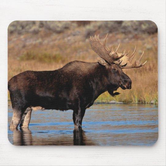 Moose Pad Mouse Mat