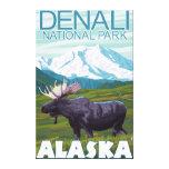 Moose Scene - Denali National Park, Alaska Canvas Prints