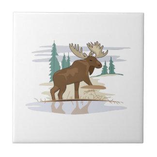 Moose Scene Small Square Tile