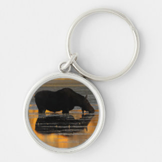 moose Silver-Colored round key ring
