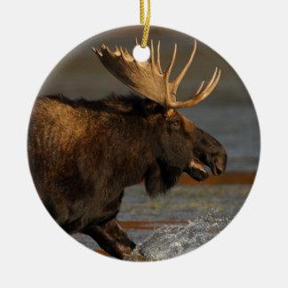 moose splash round ceramic decoration