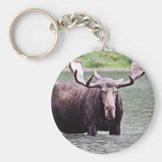 Moose Stare Down Key Ring