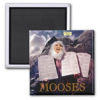 MOOSES - Magnet