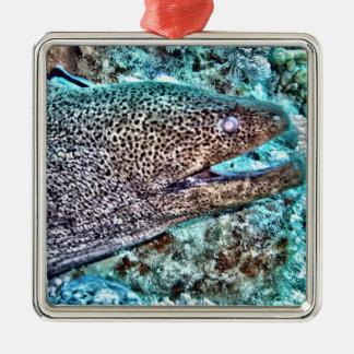 Moray Eel Silver-Colored Square Decoration