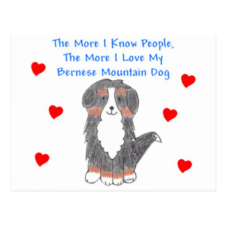 More I Know People Bernese Mountain Dog Postcard