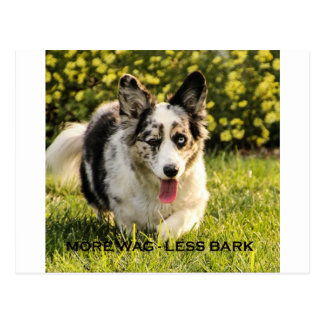 More Wag - Less Bark Postcard