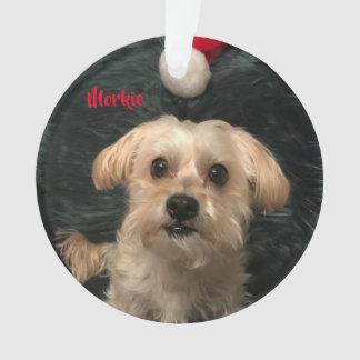 Morkie Acrylic Christmas Ornament
