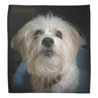 Morkie Puppy Dog Cute Love Bandana