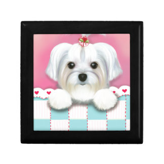 MORKIE SHELLY GIFT BOX